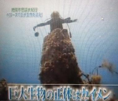 2017-10-06T04:59:01.JPG